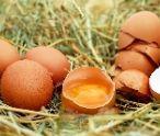 5 zaujímavostí o slepačích vajíčkach