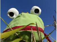 Žaba v kožuchu