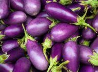Zapečená zeleninová zmes