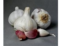 Rýchla cesnaková polievka 2