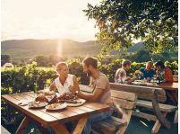 Jar v Dolnom Rakúsku je plná vína: Vydajte sa za hranice navštíviť rozmanité vinárske slávnosti