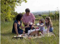Týchto 5 neuveriteľných kulinárskych podujatí v Dolnom Rakúsku odporúčame počas vinárskej jesene navštíviť