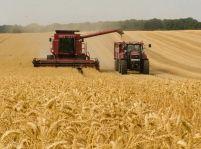 Farmári bijú na poplach, zber úrody má prísť v čase kulminácie koronavírusu.