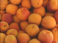 Ovocné gule