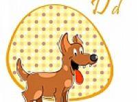 Psia výbava
