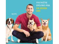 Vycvičte svojho psa za sedem dní