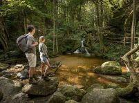 Štyri tipy na letné výlety do prírody a do hôr Dolného Rakúska