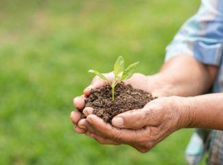 Ako môžem pomôcť prírode aj v tejto ťažkej dobe