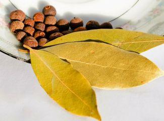 8 zaujímavostí o bobkovom liste