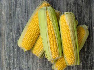 Kukurica – sú žlté zrniečka zdravé, alebo nie?