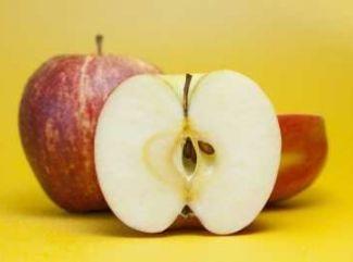 Hrnčekový jablčník