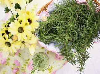 4 bylinky, ktoré si poľahky dopestujete doma