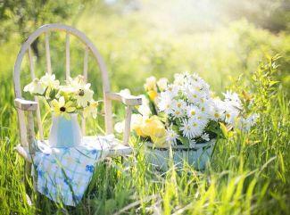 Vytvorte si oázu pokoja aj na vašej záhradke