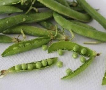 Zdravý a výživný zelený hrášok. Prečo si ho dopriať?