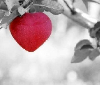 Hľadáte vhodný darček k vyznaniu lásky na Valentína?