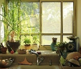 Domov plný zelene a kvetov