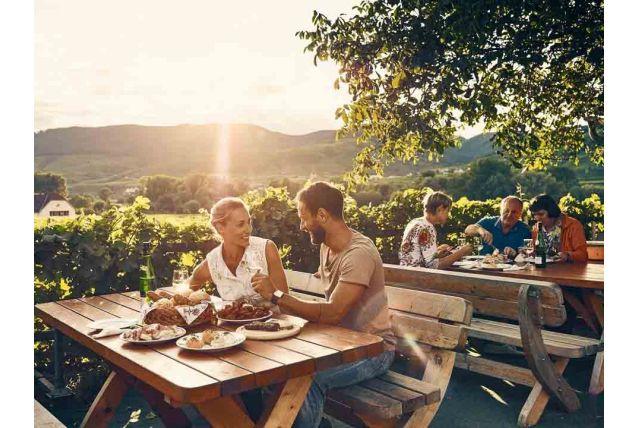 Kam sa počas Vínnej jesene v Dolnom Rakúsku vybrať na víno? Odporúčame tieto miesta.