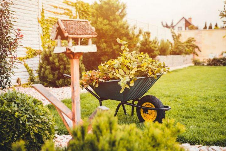 Objavte kúzlo jesennej záhrady aj u vás doma