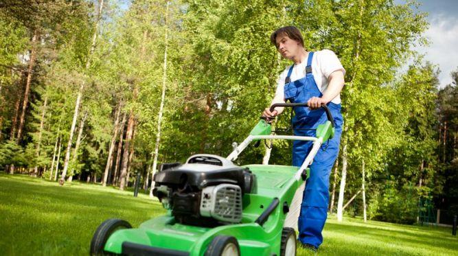 Toto zariadenie by nemalo chýbať ani vo vašej záhrade