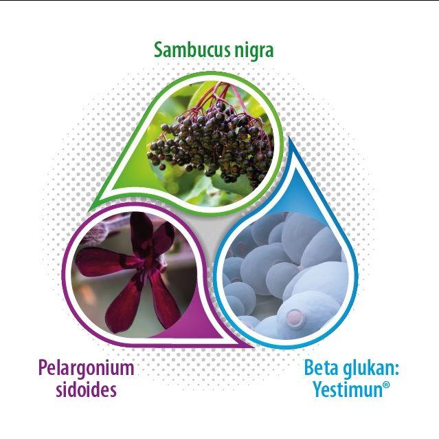 Jarný detox a lepšia imunita